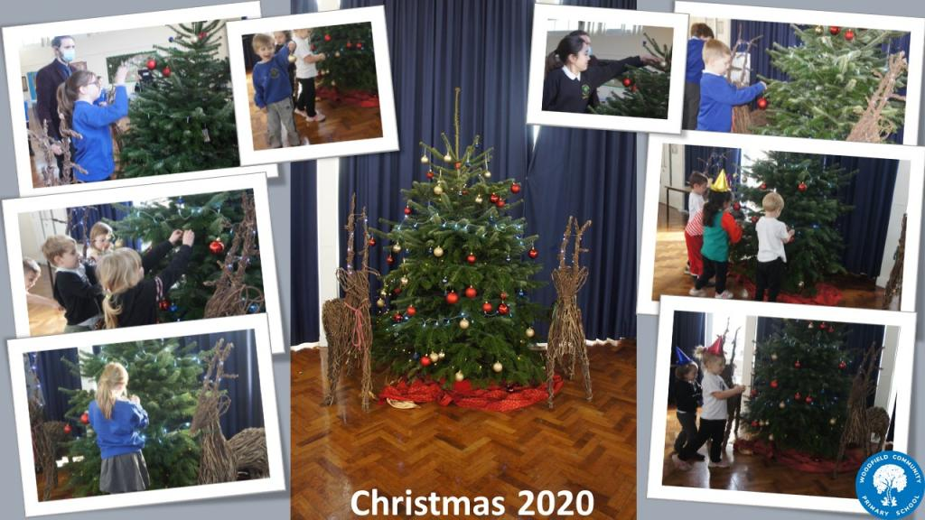 Collage of Christmas Tree photos